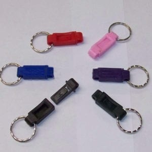 Quick Release Key Chain